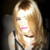 Translife Dressing Service Model Nat